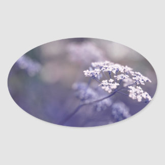 Lovely Wild Chervil Oval Sticker