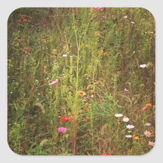 Lovely Wild Flowers Square Sticker