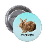 Lovely Wild Herbivore Bunny Rabbit Blue Pinback Button