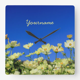 Lovely Yellow Cosmos Clear Blue Sky Flower Field Square Wallclocks