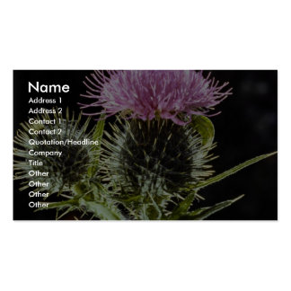 LovelySpear thistle, cirsium vulgare Double-Sided Standard Business Cards (Pack Of 100)