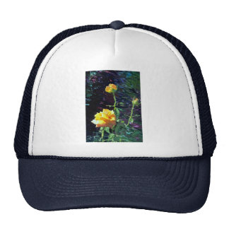 LovelyYellow rose and buds, incandescent water gla Trucker Hat