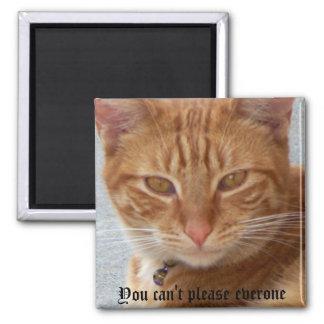 Lover_ del gato imanes de nevera