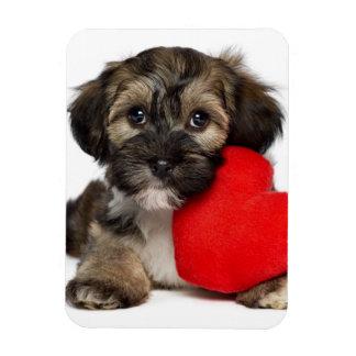 Lover Valentine Havanese Puppy Dog Rectangular Photo Magnet