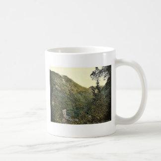Lover's Leap, Dargle. Co. Wicklow, Ireland magnifi Classic White Coffee Mug