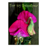 Lovers sweetpea card