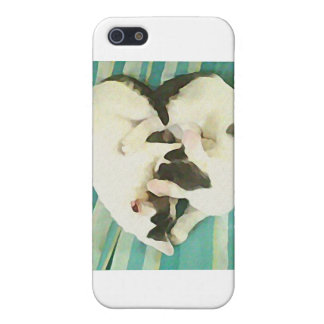 Loves Cats iPhone 5 Case