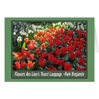 Love's Truest Language Card