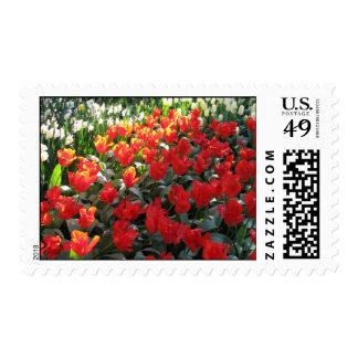 Love's Truest Language Postage Stamps