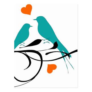 Lovey Birdy Postcard