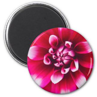 Lovey Pink and White Flower Fridge Magnet