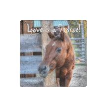Loving Chestnut Horse Friend & Barn, Equine Photo Stone Magnet