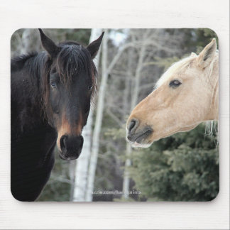 Loving Horses Equine Photo Mouse Pad