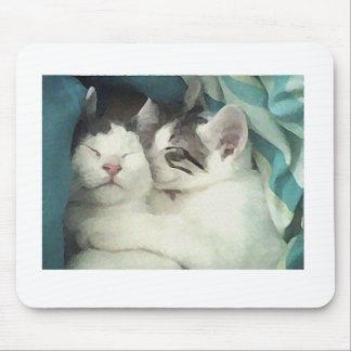 Loving kitties Mousepad
