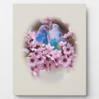 Loving Parakeets and Pink Flowers Photo Plaques