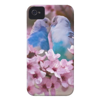 Loving Parakeets iPhone 4 Case Mate Case
