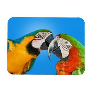Loving Parrots Flexible Magnet