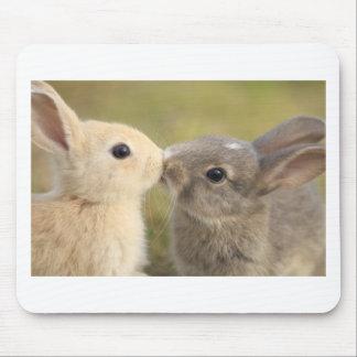 loving rabbit mouse pad