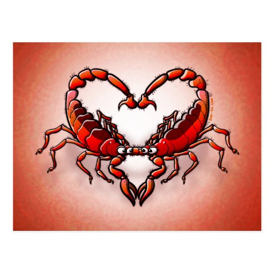 Loving Scorpions Postcard