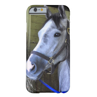 Loving the Backstretch at Belmont Barely There iPhone 6 Case