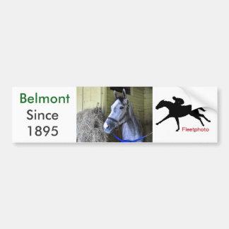Loving the Backstretch at Belmont Bumper Sticker