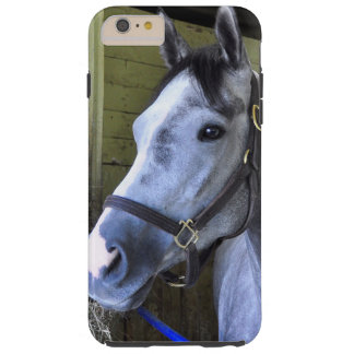 Loving the Backstretch at Belmont Tough iPhone 6 Plus Case