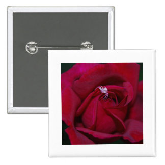Loving the red rose and meaning pinback buttons