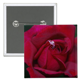 Loving the red rose and meaning pins
