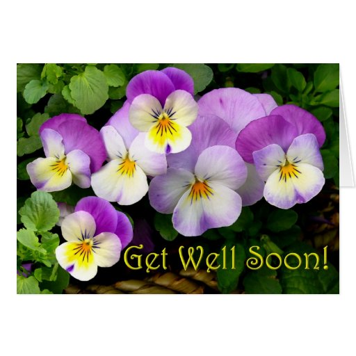 LOVING THOUGHTS ~  Get Well Soon!  Card