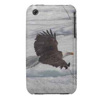 Low-Altitude Fly By Case-Mate iPhone 3 Case