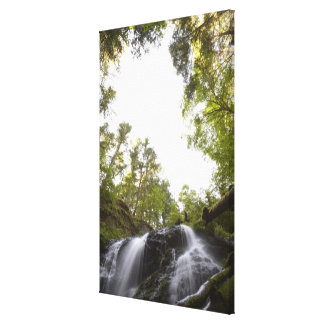 Low Angle View of a Waterfall with Sky view Gallery Wrap Canvas