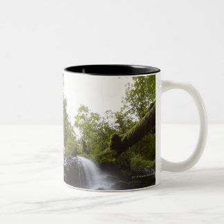 Low Angle View of a Waterfall with Sky view Two-Tone Coffee Mug
