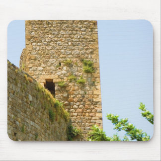 Low angle view of an ancient building, mouse pad