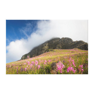 Low Angle View Of Watsonias Against The Slopes Canvas Print