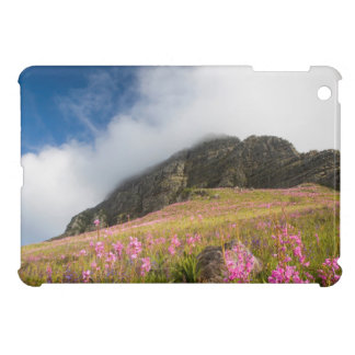 Low Angle View Of Watsonias Against The Slopes iPad Mini Covers