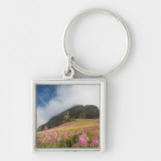 Low Angle View Of Watsonias Against The Slopes Keychain