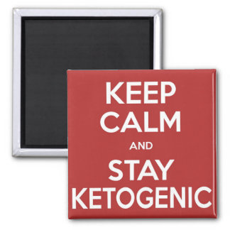 Low Carb Magnet: Keep Calm and Stay Ketogenic - Re 2 Inch Square Magnet