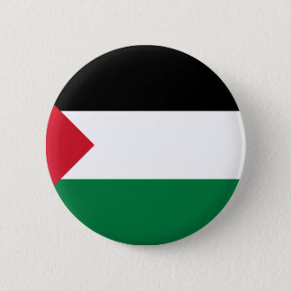 Low Cost! Palestine Flag Pinback Button