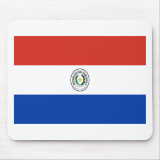 Low Cost! Paraguay Flag Mouse Pad