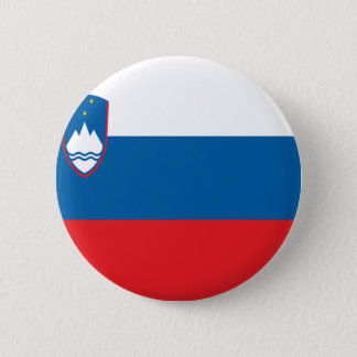 Low Cost! Slovenia Flag Pinback Button