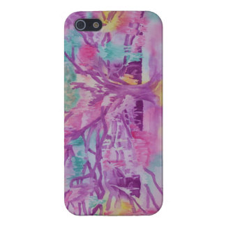 Low Country Rainbow iPhone 5/5S Case