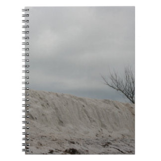 Low key photo of beach dune and dead tree notebook
