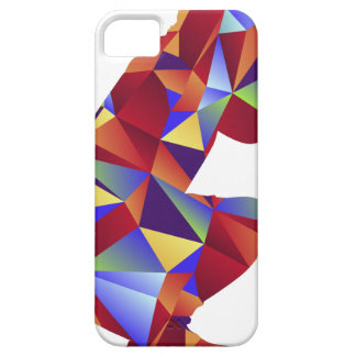 Low Poly Pattern Photographer Man Icon iPhone 5 Cases