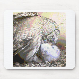 Low Res Owlbox Image Boo & Mom Mouse Pad