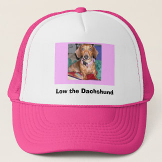 Low the Dachshund hat