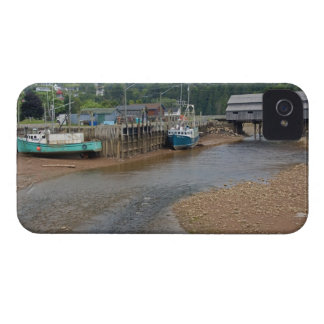 Low tide at the Bay of Fundy at St Martins New Case-Mate Blackberry Case