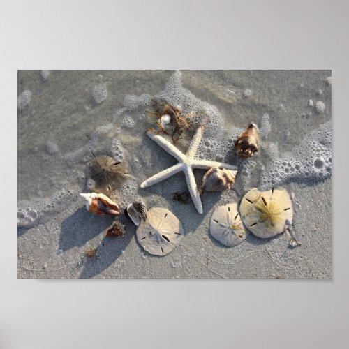 Low Tide Beach Treasures Poster