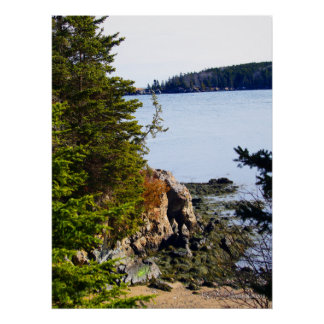 Low Tide Maine Coast Poster