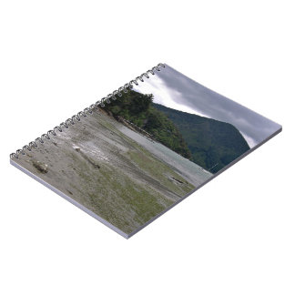 Low tide journals