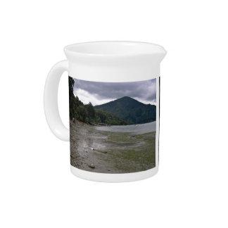 Low tide pitcher